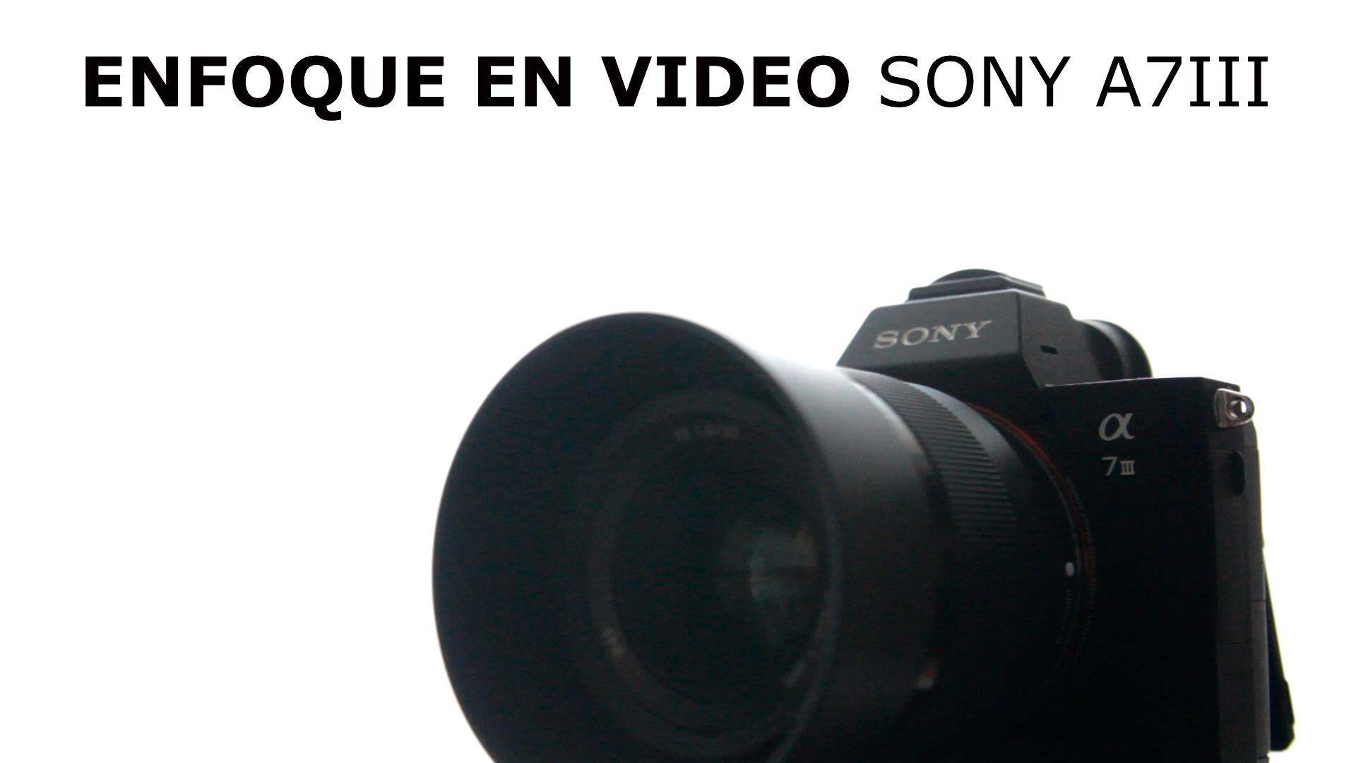 Sony A7III: el enfoque en vídeo